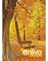 Vở Enlivo  120 trang
